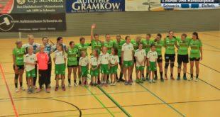 handballpokal